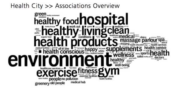 Excerpt of associations with Health City during the research phase